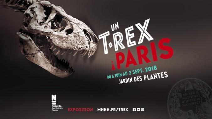 TREX Affiche